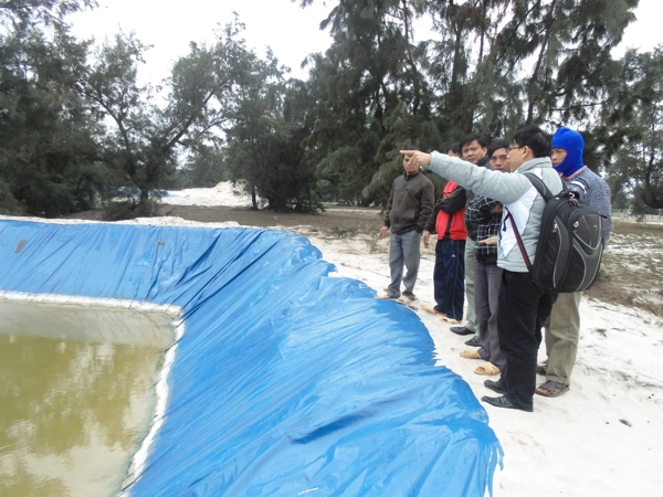 Survey for building the piloting models of VietGAP shrimp farming